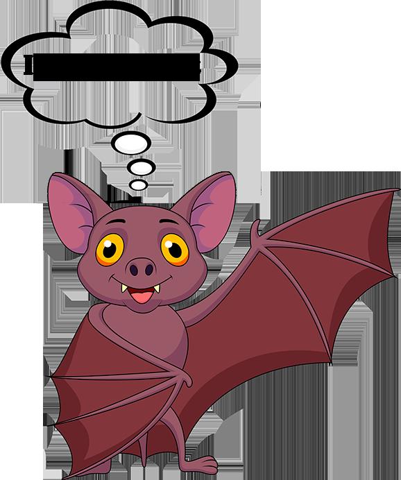 bat facts - answering maine bat questions